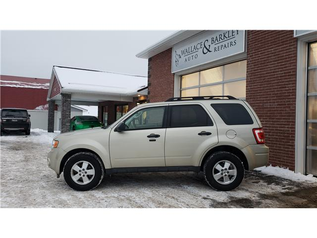 2012 Ford Escape XLT (Stk: A52454) in Truro - Image 2 of 8