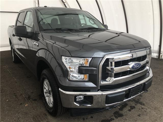 2017 Ford F-150  (Stk: 15597D) in Thunder Bay - Image 1 of 19