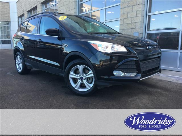 2016 Ford Escape SE (Stk: 17106) in Calgary - Image 1 of 21