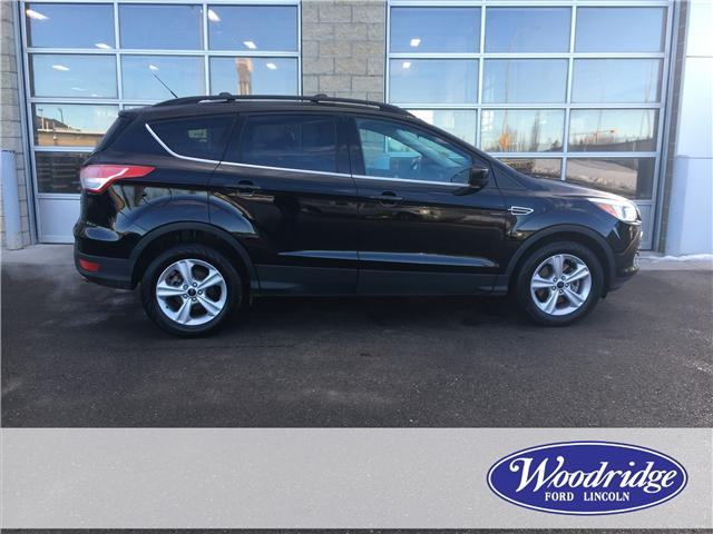 2016 Ford Escape SE (Stk: 17106) in Calgary - Image 2 of 21