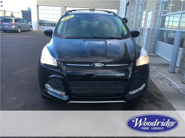 2016 Ford Escape SE (Stk: 17106) in Calgary - Image 4 of 21