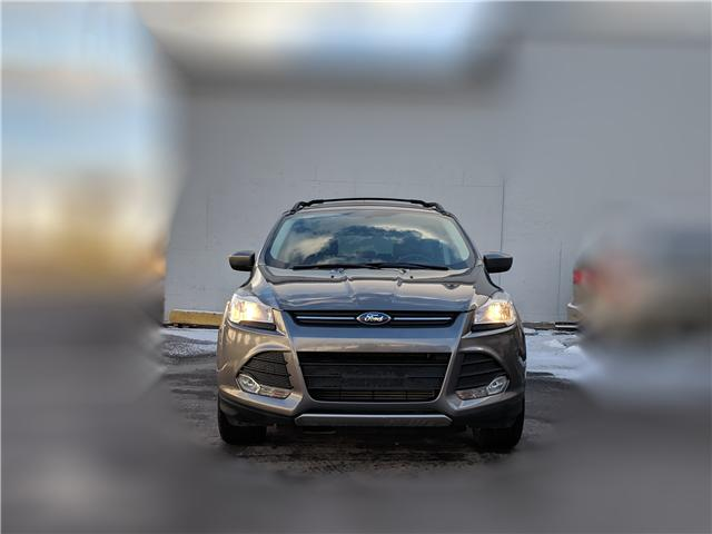 2014 Ford Escape SE (Stk: 42252) in Toronto - Image 3 of 23