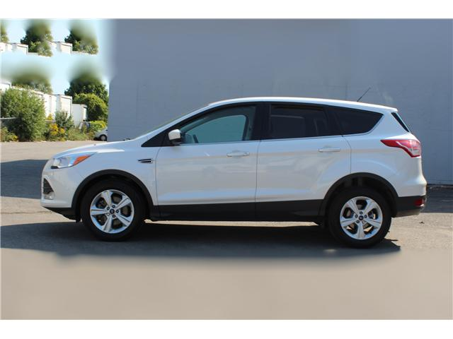 2014 Ford Escape SE (Stk: 19528) in Toronto - Image 8 of 16