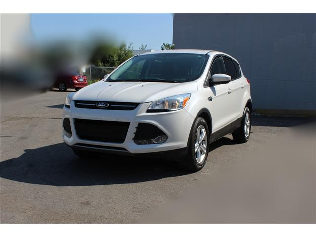 2014 Ford Escape SE (Stk: 19532) in Toronto - Image 1 of 17