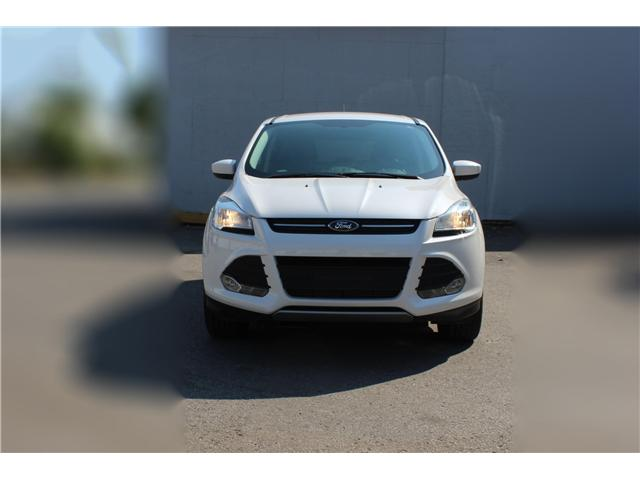 2014 Ford Escape SE (Stk: 19532) in Toronto - Image 2 of 17