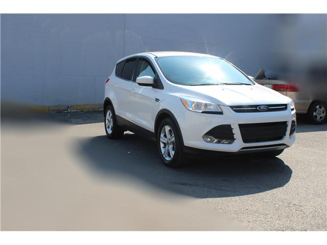 2014 Ford Escape SE (Stk: 19532) in Toronto - Image 3 of 17