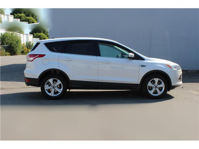 2014 Ford Escape SE (Stk: 19532) in Toronto - Image 4 of 17