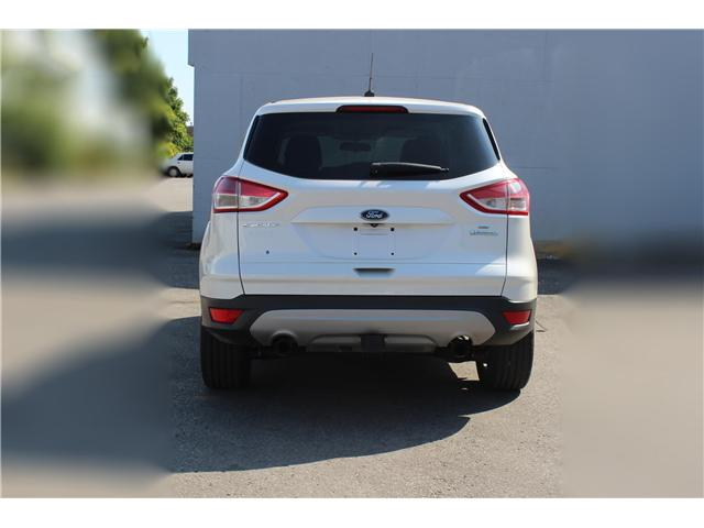 2014 Ford Escape SE (Stk: 19532) in Toronto - Image 7 of 17