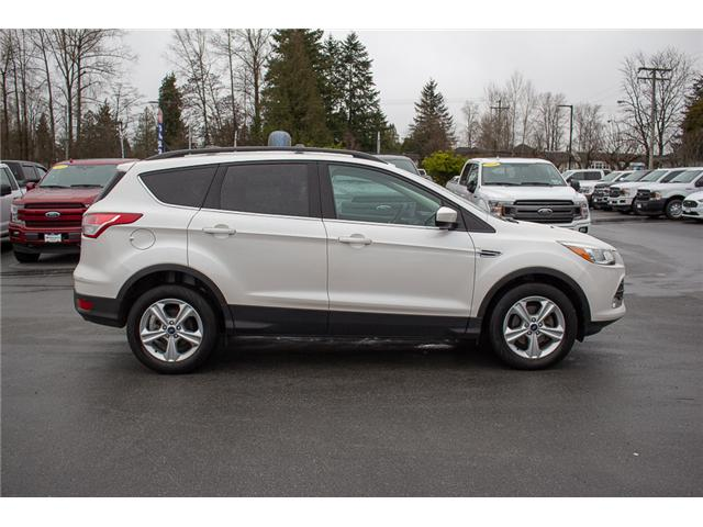 2013 Ford Escape SE (Stk: P8221A) in Surrey - Image 8 of 30