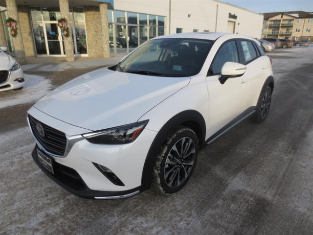 2019 Mazda CX-3 GT (Stk: M19025) in Steinbach - Image 1 of 22