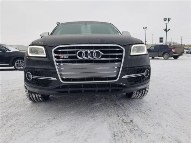 2016 Audi SQ5 3.0T Technik (Stk: P1213) in Saskatoon - Image 7 of 27