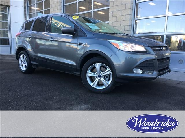 2014 Ford Escape SE (Stk: 17092) in Calgary - Image 1 of 20