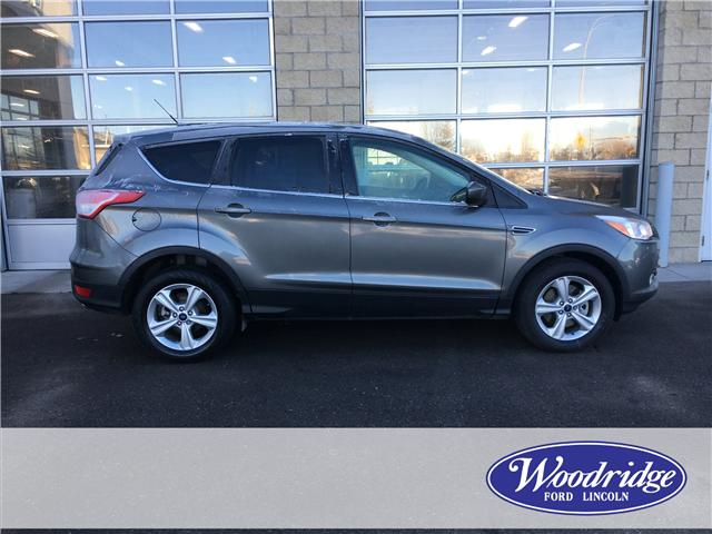 2014 Ford Escape SE (Stk: 17092) in Calgary - Image 2 of 20