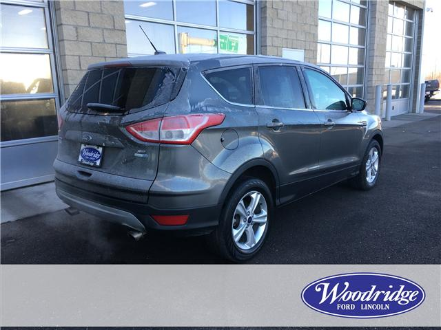 2014 Ford Escape SE (Stk: 17092) in Calgary - Image 3 of 20