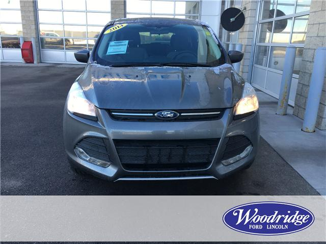 2014 Ford Escape SE (Stk: 17092) in Calgary - Image 4 of 20