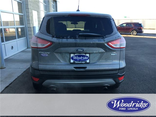 2014 Ford Escape SE (Stk: 17092) in Calgary - Image 6 of 20