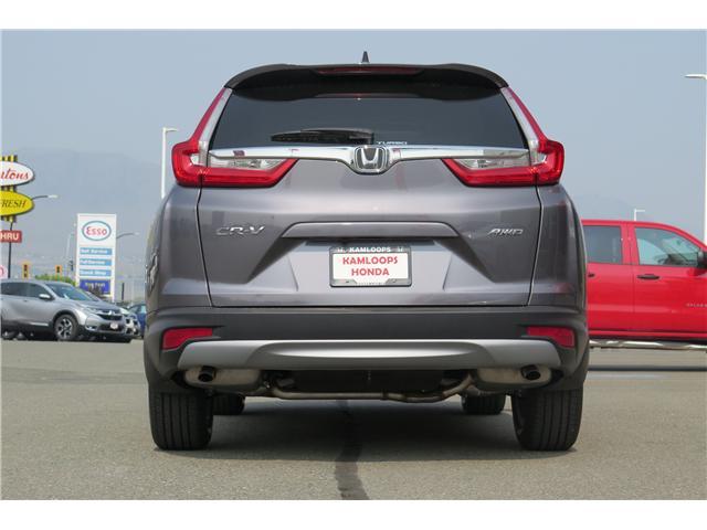 2019 Honda CR-V EX (Stk: N14305) in Kamloops - Image 5 of 15