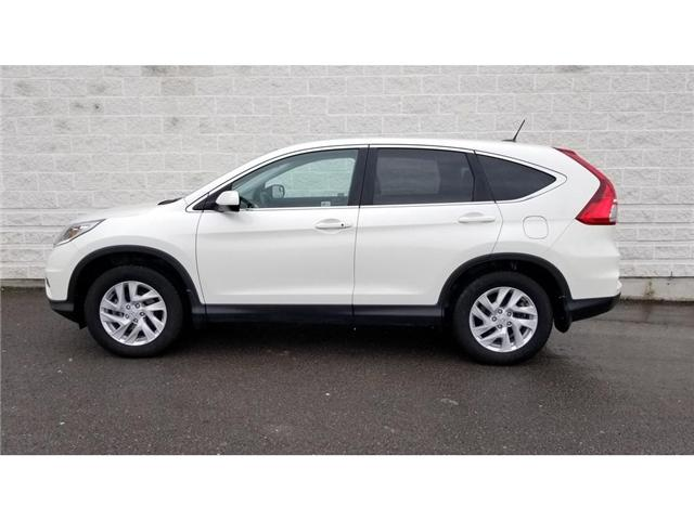 2015 Honda CR-V EX-L (Stk: 19P003) in Kingston - Image 1 of 29