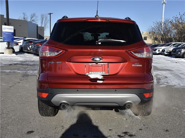 2015 Ford Escape SE (Stk: P3218) in Ottawa - Image 7 of 11
