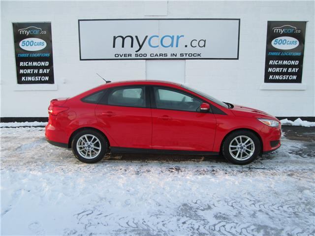 2015 Ford Focus SE (Stk: 182042) in Richmond - Image 1 of 13