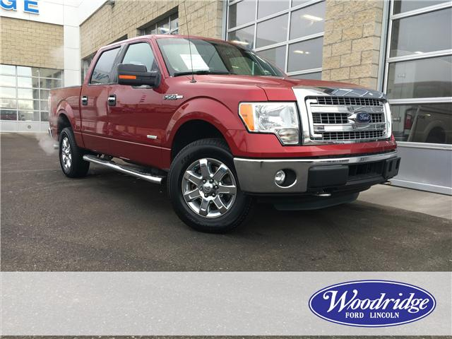2014 Ford F-150 XLT (Stk: J-2835A) in Calgary - Image 1 of 18