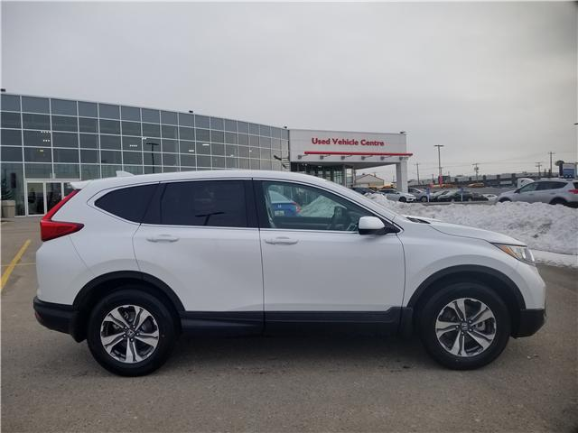 2019 Honda CR-V LX (Stk: 2190402) in Calgary - Image 2 of 9