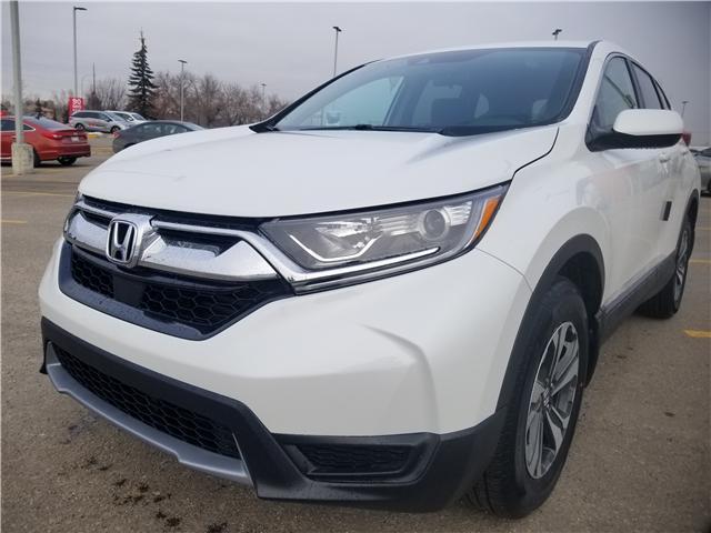2019 Honda CR-V LX (Stk: 2190402) in Calgary - Image 8 of 9