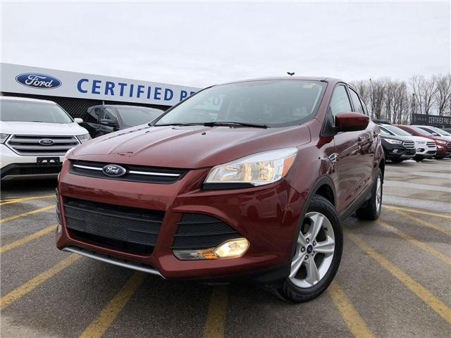 2014 Ford Escape SE (Stk: FP181655A) in Barrie - Image 1 of 22