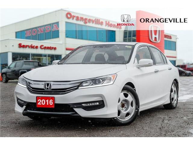 2016 Honda Accord Sport (Stk: V19062A) in Orangeville - Image 1 of 20