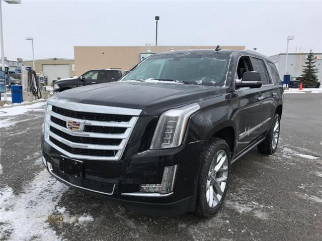 2019 Cadillac Escalade Premium Luxury (Stk: R198556) in Newmarket - Image 1 of 19