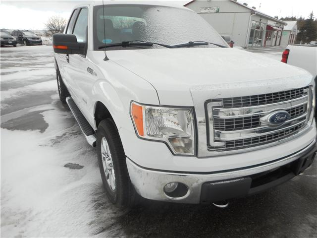 2013 Ford F-150 XLT (Stk: NC 3695) in Cameron - Image 2 of 12