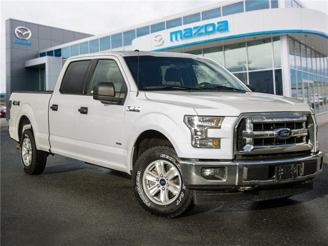 2016 Ford F-150 XLT (Stk: B0247) in Chilliwack - Image 5 of 27