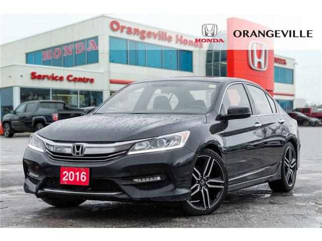 2016 Honda Accord Sport (Stk: C19018A) in Orangeville - Image 1 of 20