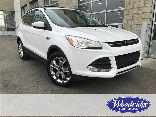 2015 Ford Escape SE (Stk: 17149) in Calgary - Image 1 of 21