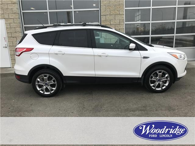 2015 Ford Escape SE (Stk: 17149) in Calgary - Image 2 of 21
