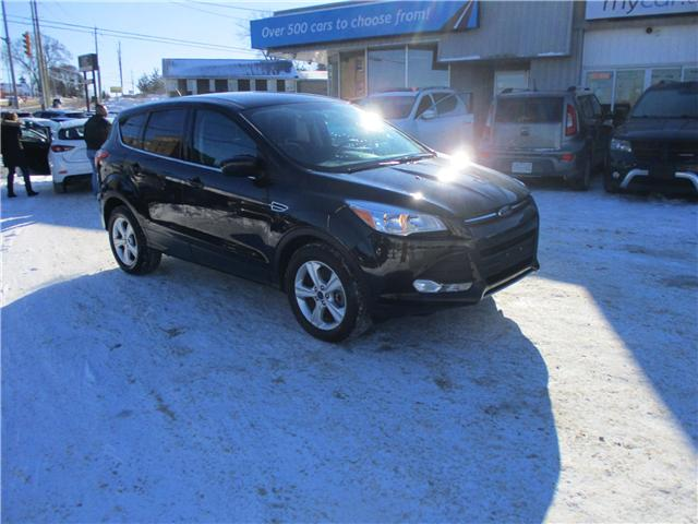 2015 Ford Escape SE (Stk: 190015) in Kingston - Image 1 of 12