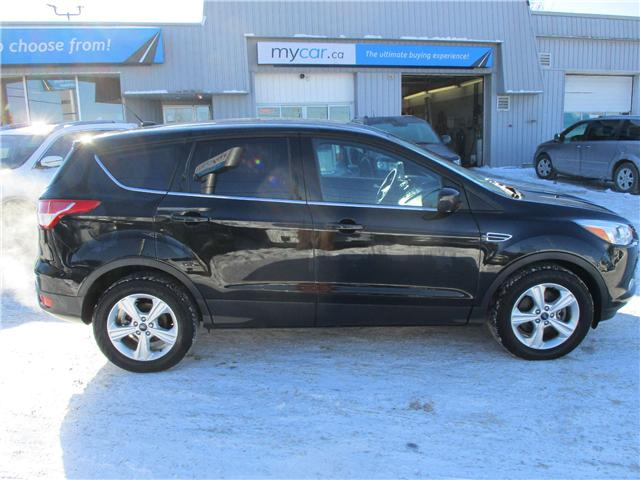 2015 Ford Escape SE (Stk: 190015) in Kingston - Image 2 of 12