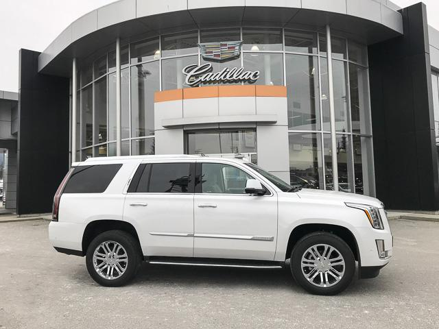 2019 Cadillac Escalade Base (Stk: 9D05390) in North Vancouver - Image 3 of 23