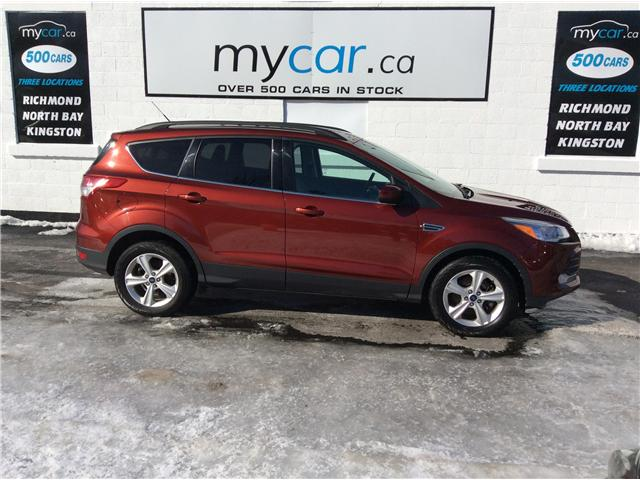 2016 Ford Escape SE (Stk: 190081) in Richmond - Image 2 of 20
