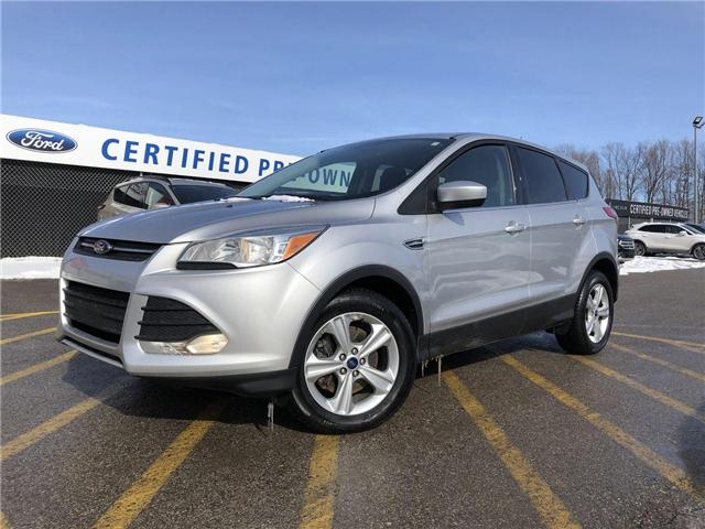 2014 Ford Escape SE (Stk: P8675) in Barrie - Image 1 of 22