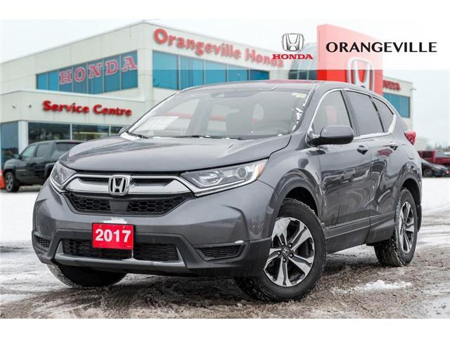 2017 Honda CR-V LX (Stk: U3067) in Orangeville - Image 1 of 19