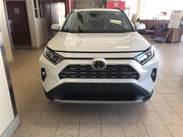 2019 Toyota RAV4 Limited (Stk: 190384) in Whitchurch-Stouffville - Image 1 of 6