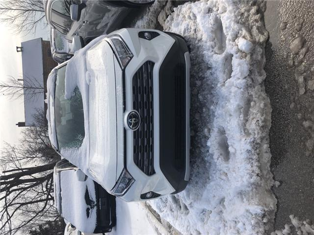2019 Toyota RAV4 Limited (Stk: 190392) in Whitchurch-Stouffville - Image 1 of 4