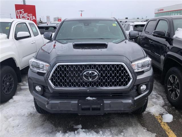 2019 Toyota Tacoma SR5 V6 (Stk: 9TA191) in Georgetown - Image 2 of 5
