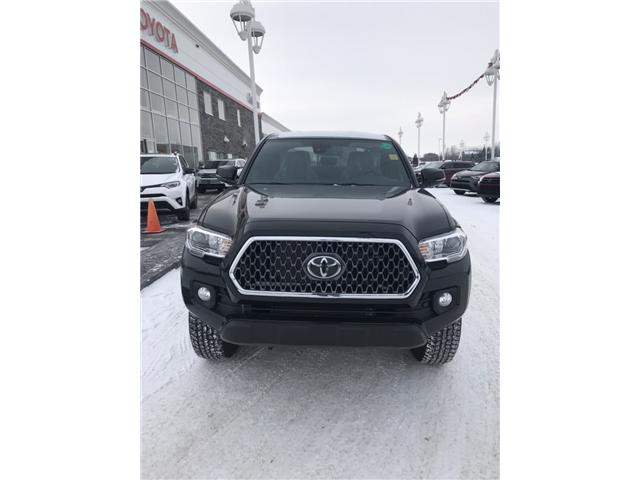 2019 Toyota Tacoma TRD Off Road (Stk: 190147) in Cochrane - Image 2 of 22