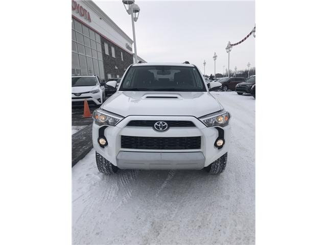 2019 Toyota 4Runner SR5 (Stk: 190058) in Cochrane - Image 2 of 22