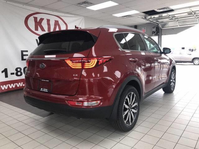 2019 Kia Sportage EX (Stk: 21480) in Edmonton - Image 6 of 16