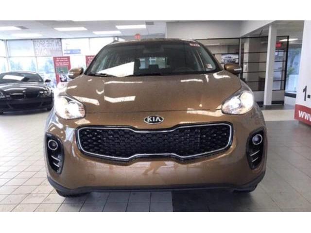 2019 Kia Sportage EX Premium (Stk: 21481) in Edmonton - Image 2 of 17