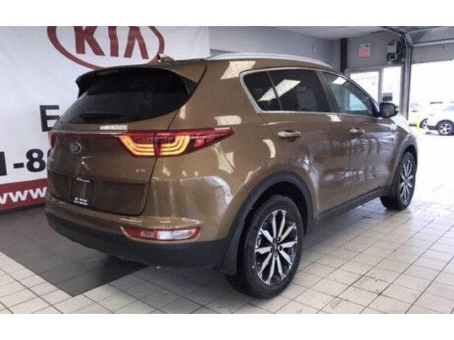2019 Kia Sportage EX Premium (Stk: 21481) in Edmonton - Image 5 of 17