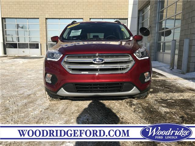 2018 Ford Escape SEL (Stk: 17174) in Calgary - Image 4 of 21